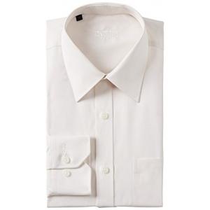 Raymond Men's Business Shirt (8903963727248)