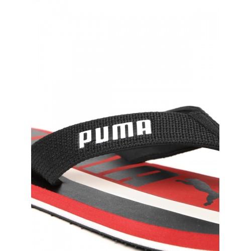 Puma Robby Graphic x DP Flip Flops