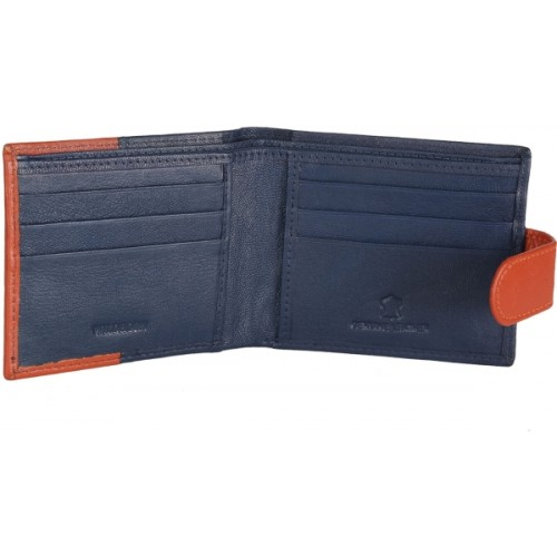 WildHorn Men Blue Genuine Leather Wallet