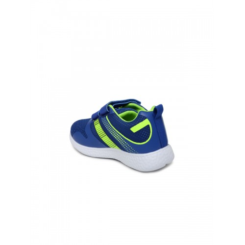 Kittens Blue & Green Training Shoes