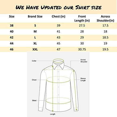 Dennis Lingo Men's Solid Chinese Collar Casual Shirt