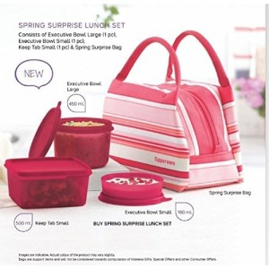 Tupperware Pink Plastic Spring Surprise Lunch Set (1110 Ml)