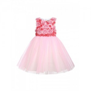 A Little Fable Girls Pink Embellished Fit and Flare Dress