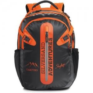 Skybags Strider 01 Grey 33 L Backpack(Black)