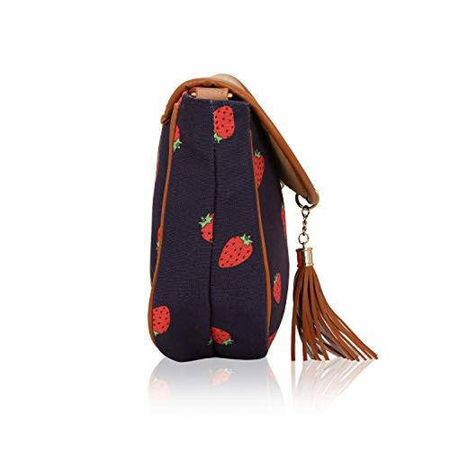 KLEIO Kleio Stylish Tassel Sling Bag For Girls/Women