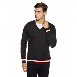 Peter England Men's Synthetic Sweater