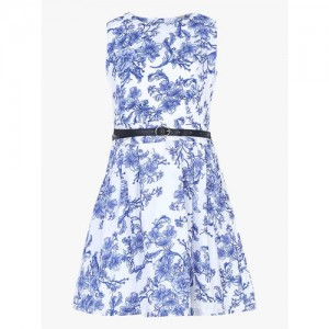 Allen Solly Junior Blue Casual Dress