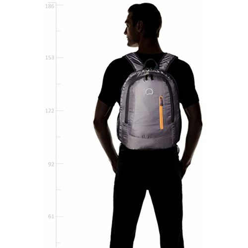 Delsey Nice 22 Ltrs Grey Backpak (00300560011)