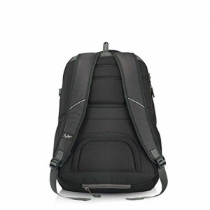 Skybags 42 Ltrs Black Laptop Backpack (TECK4BLK)