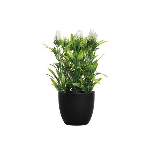 FOLIYAJ Set of 2 Green & Yellow Artificial Plant With Pot