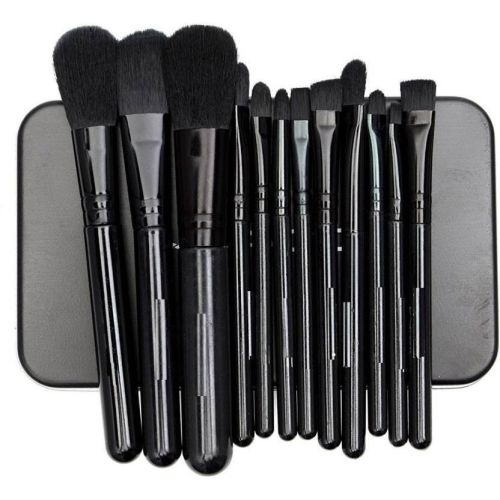 Skinplus 12 Pcs Cosmetic Makeup Brush Set (black)