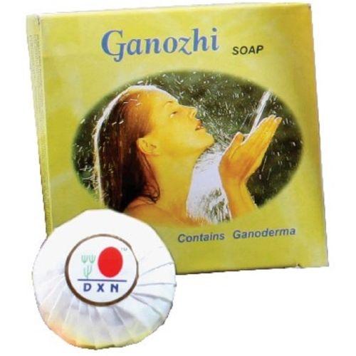 DXN Ganozhi Soap Pack of 4 DXN Ganozhi Soap