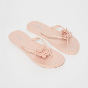 Ginger by Lifestyle Peach-Coloured Embellished Thong Flip-Flops