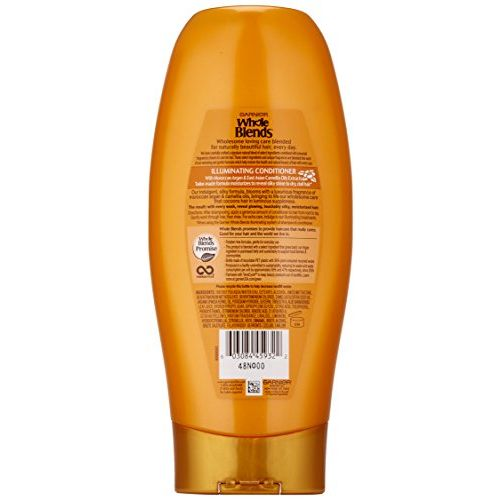 Garnier Hair Care Whole Blends Illuminating Moroccan Argan and Camellia Oil Extract Conditioner