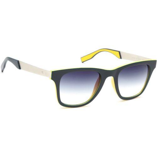 French Connection Wayfarer Sunglasses(Blue)