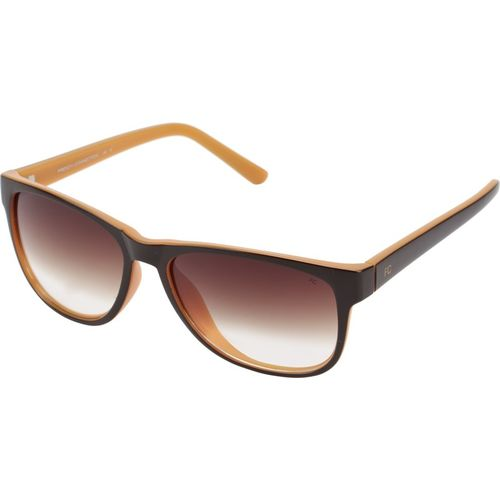 French Connection Wayfarer Sunglasses(Brown)