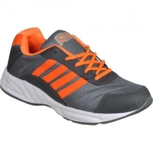 Jollify RBC Cricket Shoes