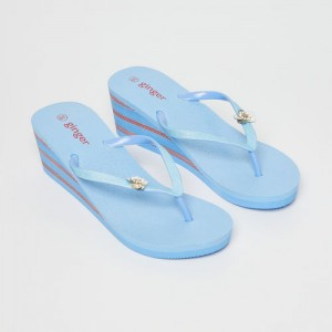 80cd9d129fca Buy Ginger by lifestyle Blue Rubber Slip-on Flat Flip Flops online ...