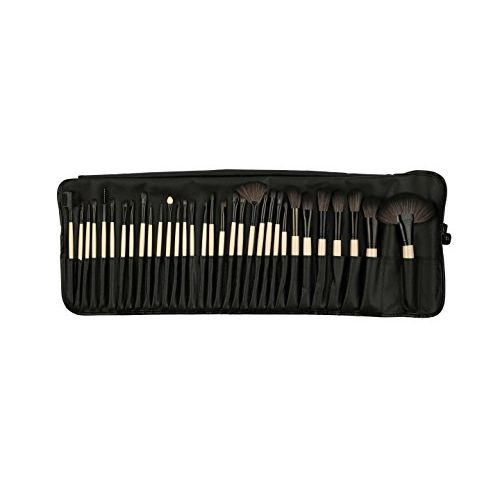 Foolzy 32 Professional Makeup Brush Set with Travel Case (BR-6C)