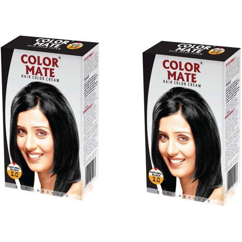 Color Mate Cream Hair Color(Natural Black)