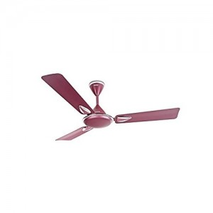 Usha Verta Plus 1200mm 55-Watt Ceiling Fan (Lavender Chrome)