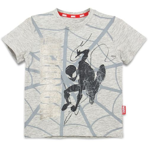 Marvel Boys Printed Cotton T Shirt(Grey, Pack of 1)