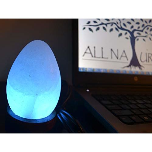 ALL NATURALS USB Salt Lamp with Color Changing LED Pink Egg Shape Unique Gift for Kids Room, Office, Study & Decor, Works with Laptop & Mobile Chargers