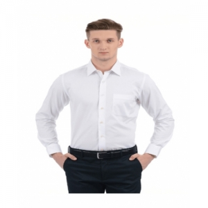 Arrow White Cotton Slim Fit Formal Shirt
