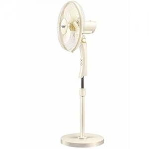 Eveready High Speed Pedestal Fan PFN 02
