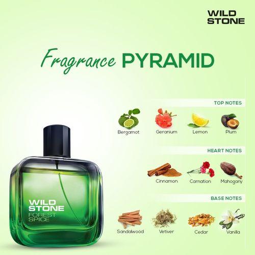 Wild Stone HYDRA ENERGY EAU DE PARFUME 50ml +FORESHT SPICE EAU DE PARFUME 50ml + NIGHT RIDER EAU DE PARFUME 50ml - PACK OF 3 Eau de Parfum - 50 ml(For Men)