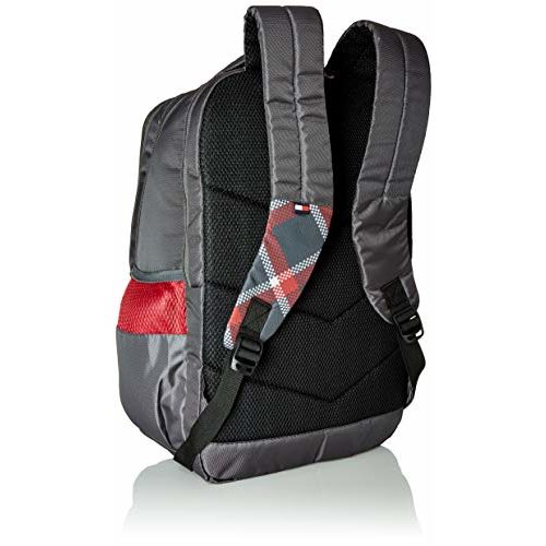 Tommy Hilfiger Alps 29 Ltrs Grey Laptop Backpack (TH/ALPSLAP07)
