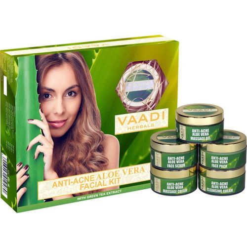 Vaadi Herbals Anti-Acne Aloe Vera Facial Kit with Green Tea Extract 270 GM 270 g