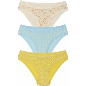 2d258e1318a 10 Best Panties Brands for Stylish and Versatile Women - LooksGud.in