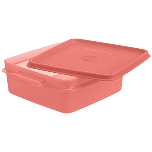 Signoraware Container Set and Easy_to_Carry Box