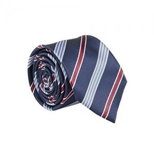 702f693b21f3 tossido Men's Woven Blue Striped Micro Fiber Skinny Neck Tie (Free Size)