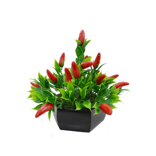 fancy mart Red & Green Plant With Pot