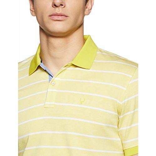 Allen Solly Men's Striped Regular Fit T-Shirt