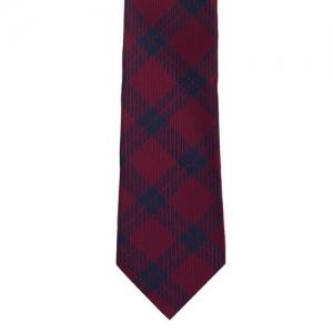 The Tie Hub Maroon & Blue Checked Broad Tie
