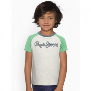 Pepe Jeans Boys Grey Melange & Green Printed Round Neck T-shirt