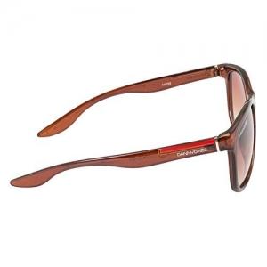 Danny Daze Oversized Sunglasses (Brown) (D-2536-C2)