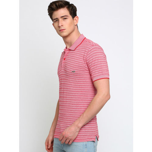 Crocodile Men Red & White Striped Polo Collar T-shirt