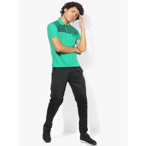 Alcis Men Green Printed Polo Collar T-shirt