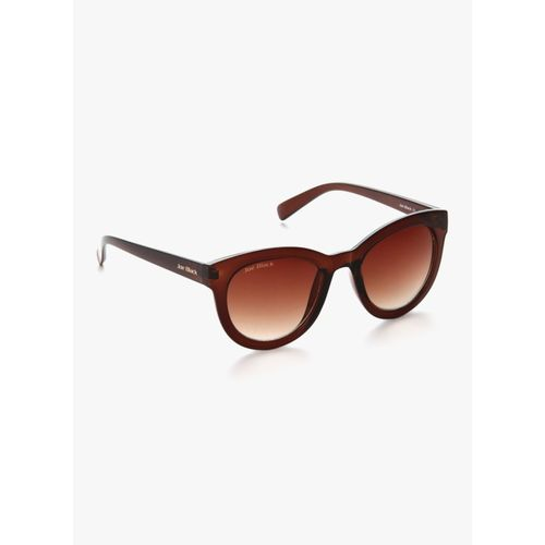 Joe Black Cat-eye Sunglasses(Brown)