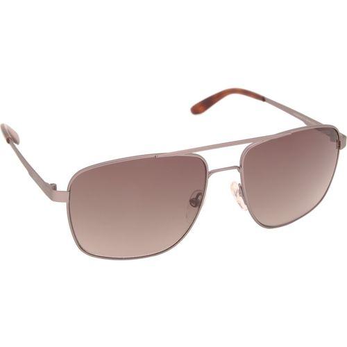 Carrera Round Sunglasses(Brown)