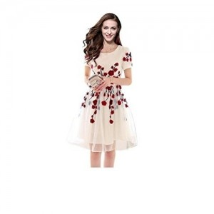 Sky Fashions Cream Embroidered Net Dresses