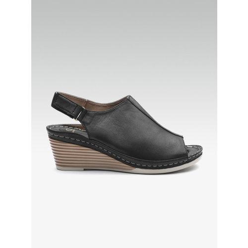 Carlton London Women Black Solid Mules