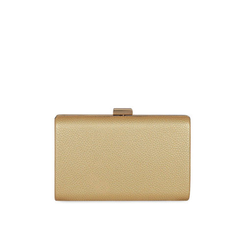 KLEIO Gold-Toned Solid Clutch