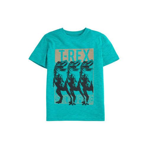 next Boys Teal Green Printed Round Neck T-shirt