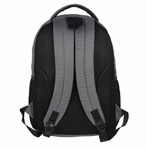 Fur Jaden Casual 25 Ltrs Backpack for School, College and Office Use 22 Ltrs Grey Casual Backpack (BM46_Grey)