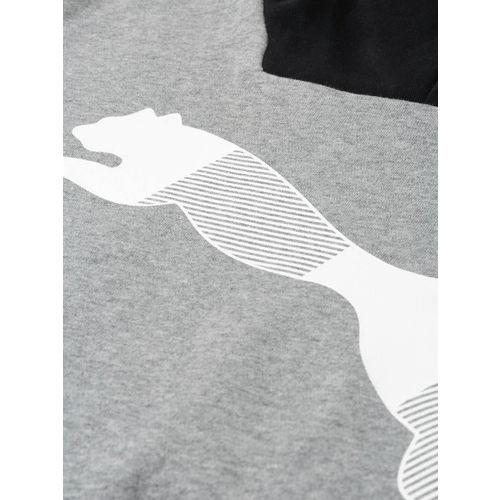 Puma Men Grey Printed Modern Sports FL Hooded Sweatshirt